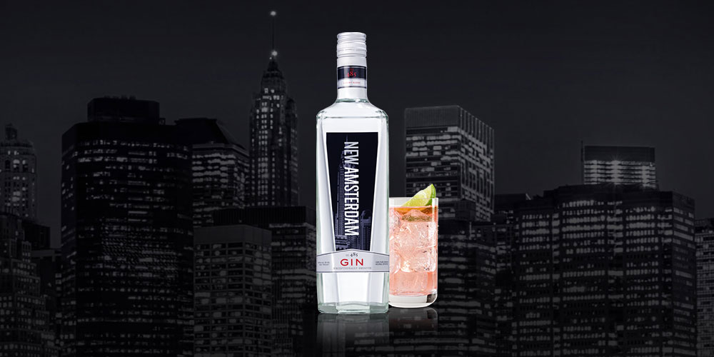 New Amsterdam Gin Prices Guide