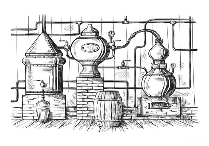 How Gin Is Made